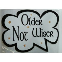 Older Not Wiser Photo Booth Props