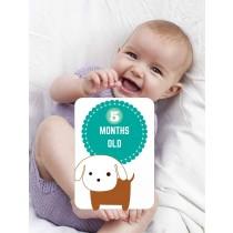Baby Milestone cards ( Months )