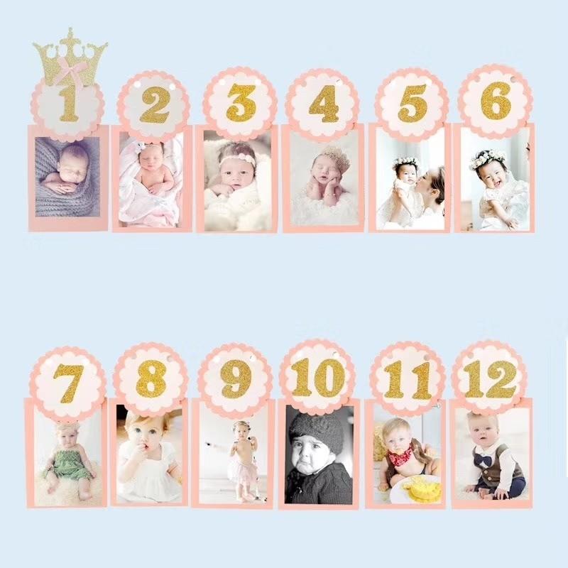 1st Birthday Month Photo Banner - PINK