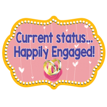 Happily Engaged Photo Booth