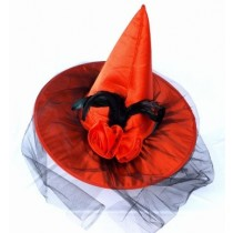 Witch Cap with Net  ( Assorted Colours )