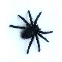 Spiders -  Black ( Set of 6 )