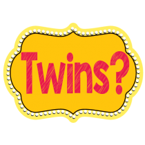 Twins Photo Booth Prop Set