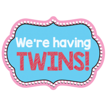 Having Twins Photo Booth Prop